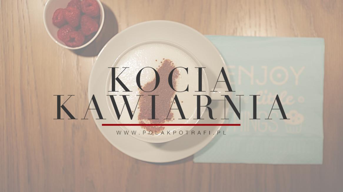 Kampania crowdfunding-owa Kociej Kawiarni na polakpotrafi.pl
