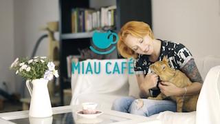 Kampania crowdfunding-owa Miau Cafe na wspieram.to